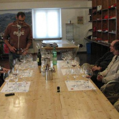 Wine Tasting at Cesarini Sforza Wineards - Montefalco