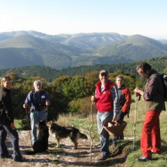 Hiking ad picking mushrooms on Monte Maggiore Oct 2010
